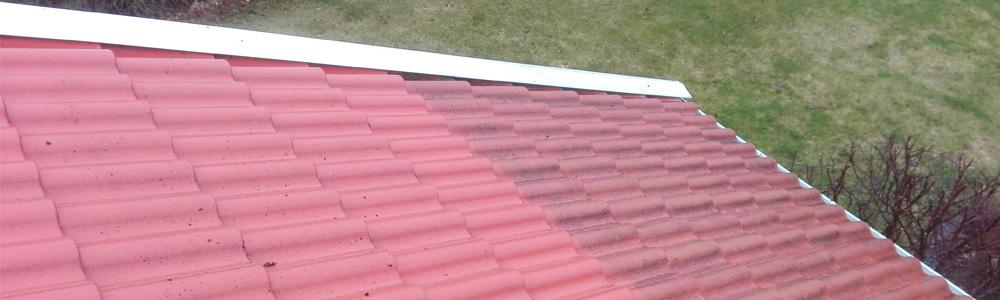 tak och fasadtvätt