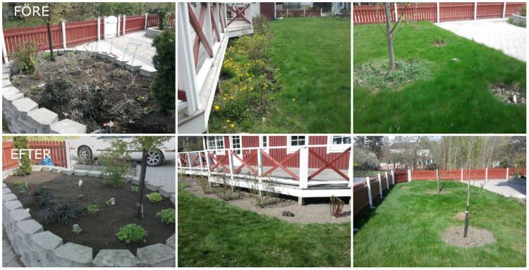 referens trädgård vfts