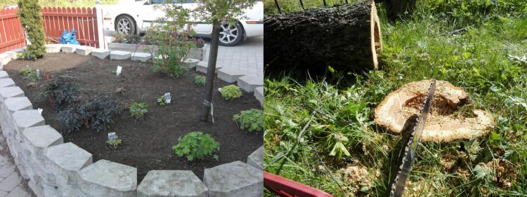 trädgårdsarbete skågos